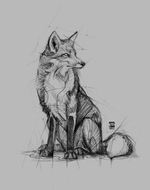 pencil drawings animals sketches easy sketch fox psdelux animal drawing psdeluxe simple draw wolf deviantart fuchs animales realistic eyes practicable