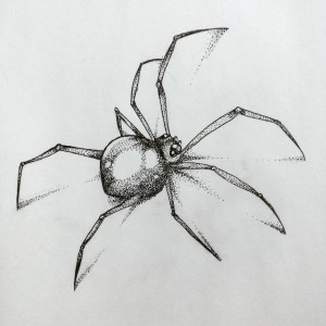 draw easy spider drawing drawings bored tattoo cool tarantula badass simple pencil creepy sketches realistic spiders beginners buzzhippy hippy buzz