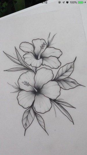 pencil drawings easy flowers inspiration flower drawing tulip