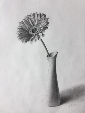 pencil drawing easy drawings sketches sketch flower vase simple graphite still draw flowers gerbera elena whitman source shading charcoal pencils