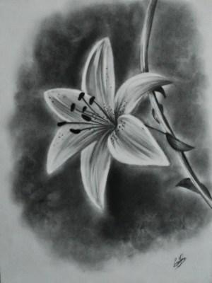 easy pencil draw sketches