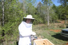 Matt smoking a hive (after we learned a lesson with the first hive)