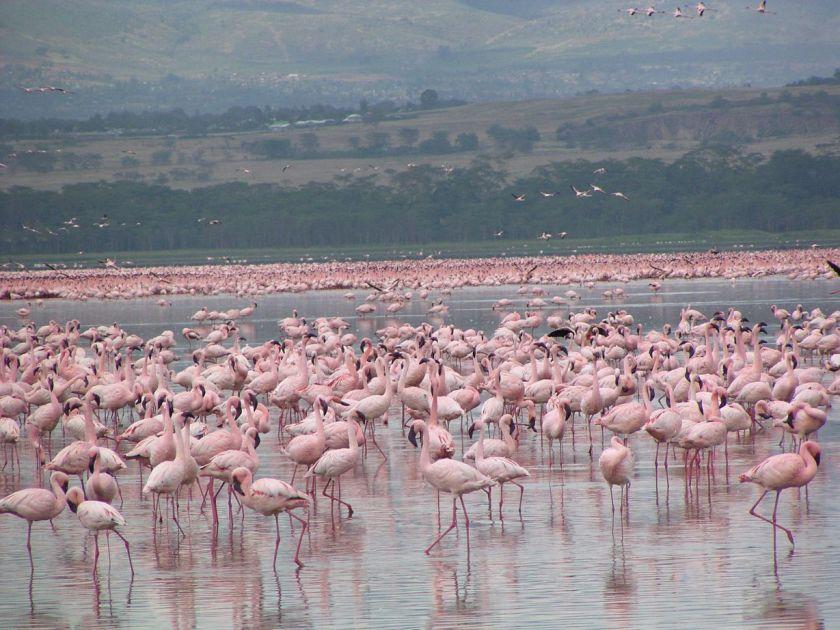 beautiful-places-kenya