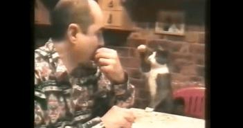 ジェスチャーでやり取りをするネコと飼い主