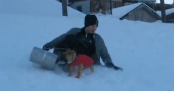 少年からソリを奪い颯爽と滑っていく犬
