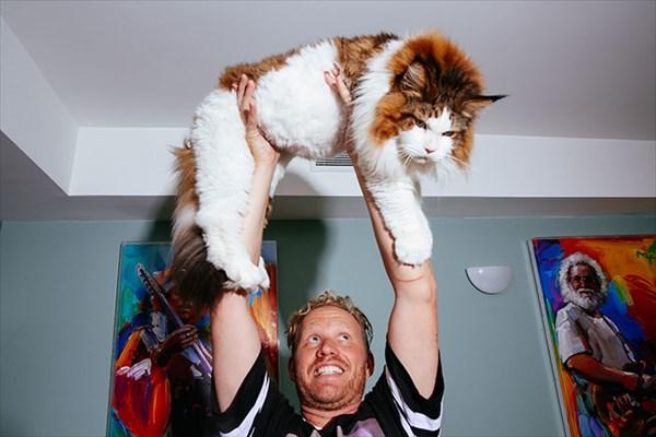 largest-cat-nyc-samson-jonathan-zurbel-31_R