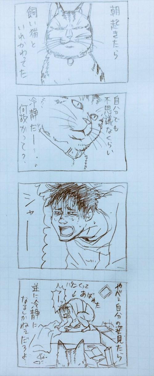 catcomics1_R