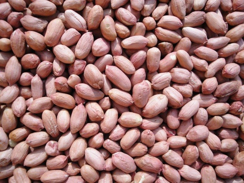 Image result for GROUNDNUTS