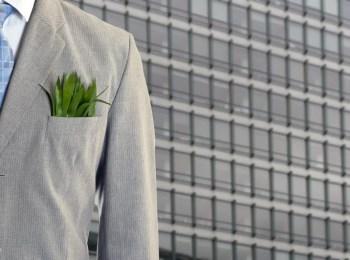 green accounting