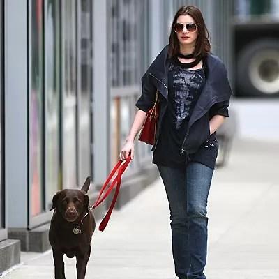 15 Celebrities With Labrador Retrievers