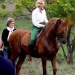 Horseback Riding Date Ideas For Students Buzzsharer Com