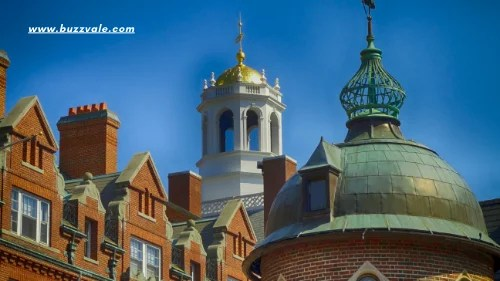 harvard university for international students