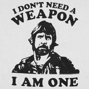 Chuck-Norris-Weapon