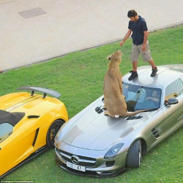 These-48-Photos-Show-Why-Dubai-Is-The-Most-Insane-Place-On-Earth.-It8217s-Crazier-Than-I-Ever-Could-Have-Imagined42
