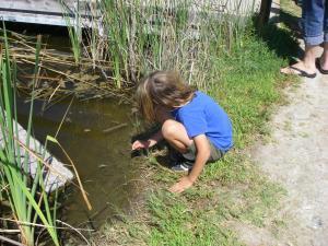 summer camp 2016 exploring lagoon life