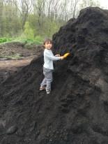 Shoveling compost.
