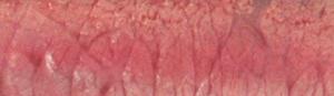 Viande-cuisson-moins-saignante