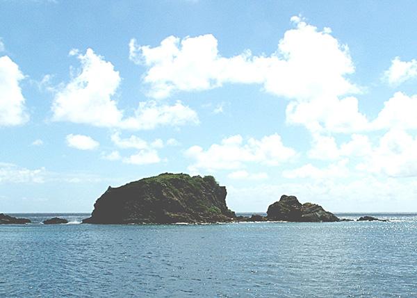 angelfish reef, angelfish reef bvi, angelfish reef diving