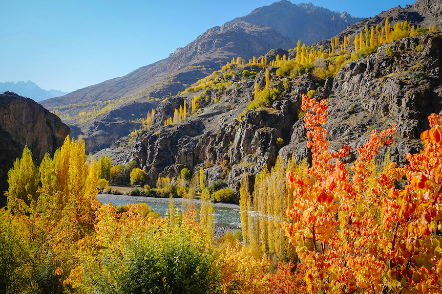 autumn leaf color in the mountains