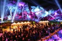 Cannes Film Festival Parties