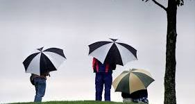 rain golf umbrellas