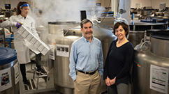 Front: Meir Stampfer and Francine Grodstein at the study's biorepository. Back: Caitlin Barrows removes samples from a nitrogen freezer. (Photo by Stu Rosner)