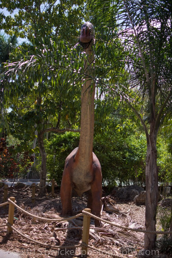 2015 Dino Egg Safari-3096