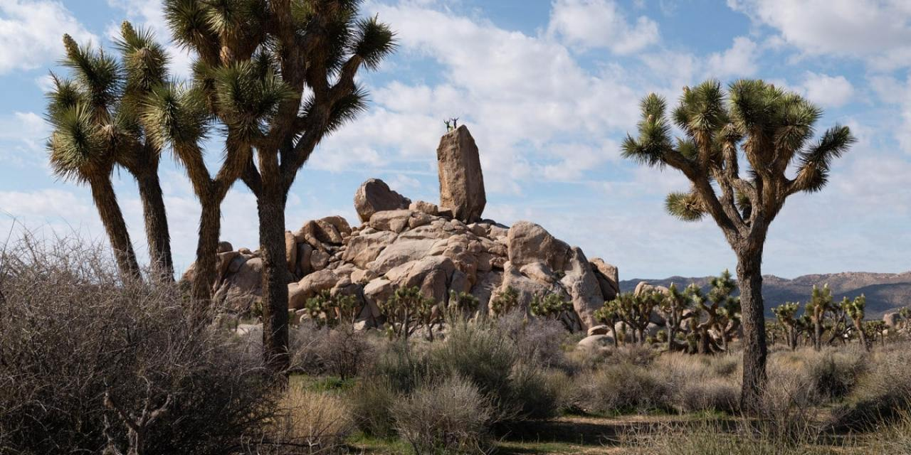 Rock Climbing In Joshua Tree National Park: The Ultimate Road Trip