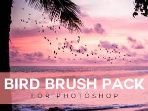 bird brush for photoshop