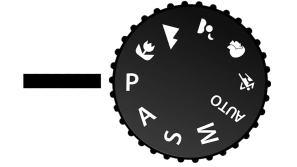 programmed-automatic-camera-mode