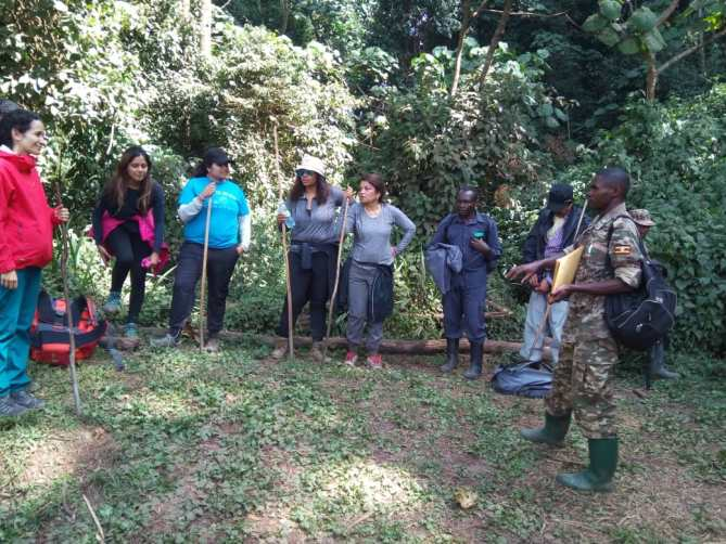 2 days gorilla trekking safari Bwindi impenetrable national park