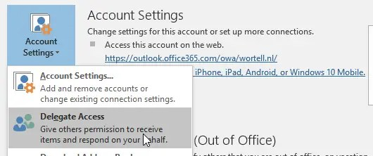 You do not have permission to schedule Skype meetings on behalf of the owner.