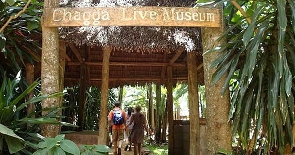 Marangu Village Walking 6 Days