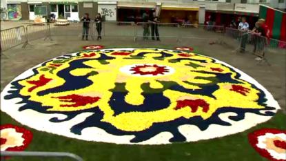 un tapis de fleurs citoyen donne de la