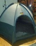 Michael's WHACK tent