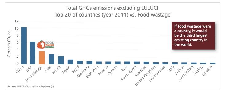 FAO Emissions chart