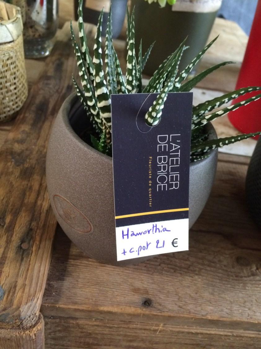 Etiquette fleuriste