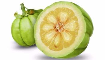 Weight loss diet in gujarati