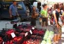 белослатински пазар