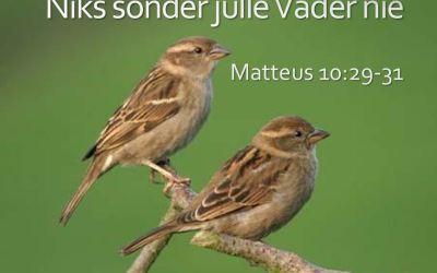 Matt 10:29-31 Niks sonder julle Vader nie