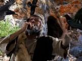 Elijah-ravens