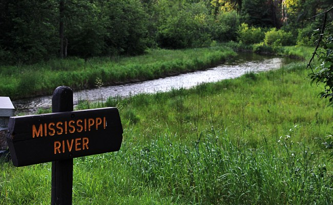 Mississippi River Headwaters Back Yard Biology