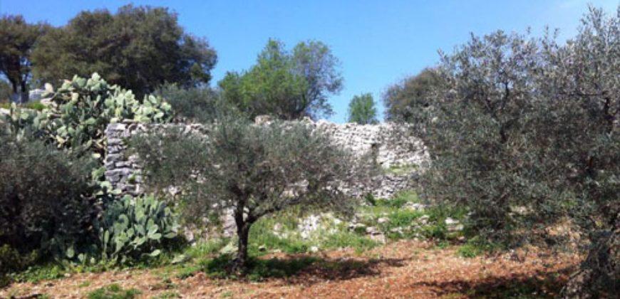 Land for Sale Ain Kfaa Jbeil Area 1450Sqm