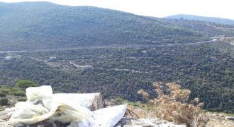 Land for Sale Haqel Jbeil Area 980Sqm