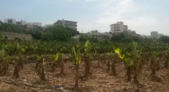 Land for Sale Jbeil Byblos City Area 1275Sqm