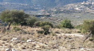 Land for Sale Bejjeh Jbeil Area 6606Sqm