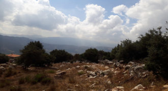 Land for Sale Ehmej Jbeil Area 3650Sqm