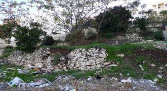 Land for Sale Halat Jbeil Area 815Sqm
