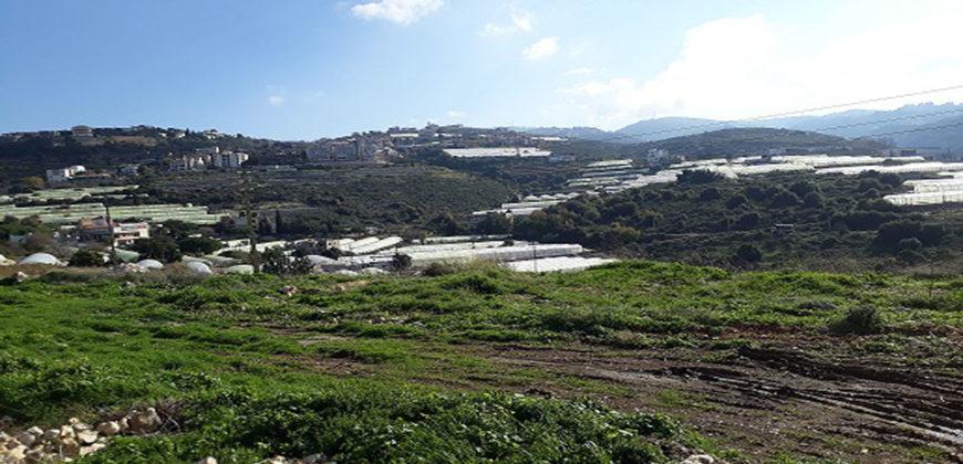 Land for Sale Edde Jbeil Area 1234Sqm