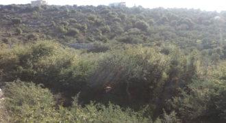 Land for Sale Bejjeh Jbeil Area 1085Sqm